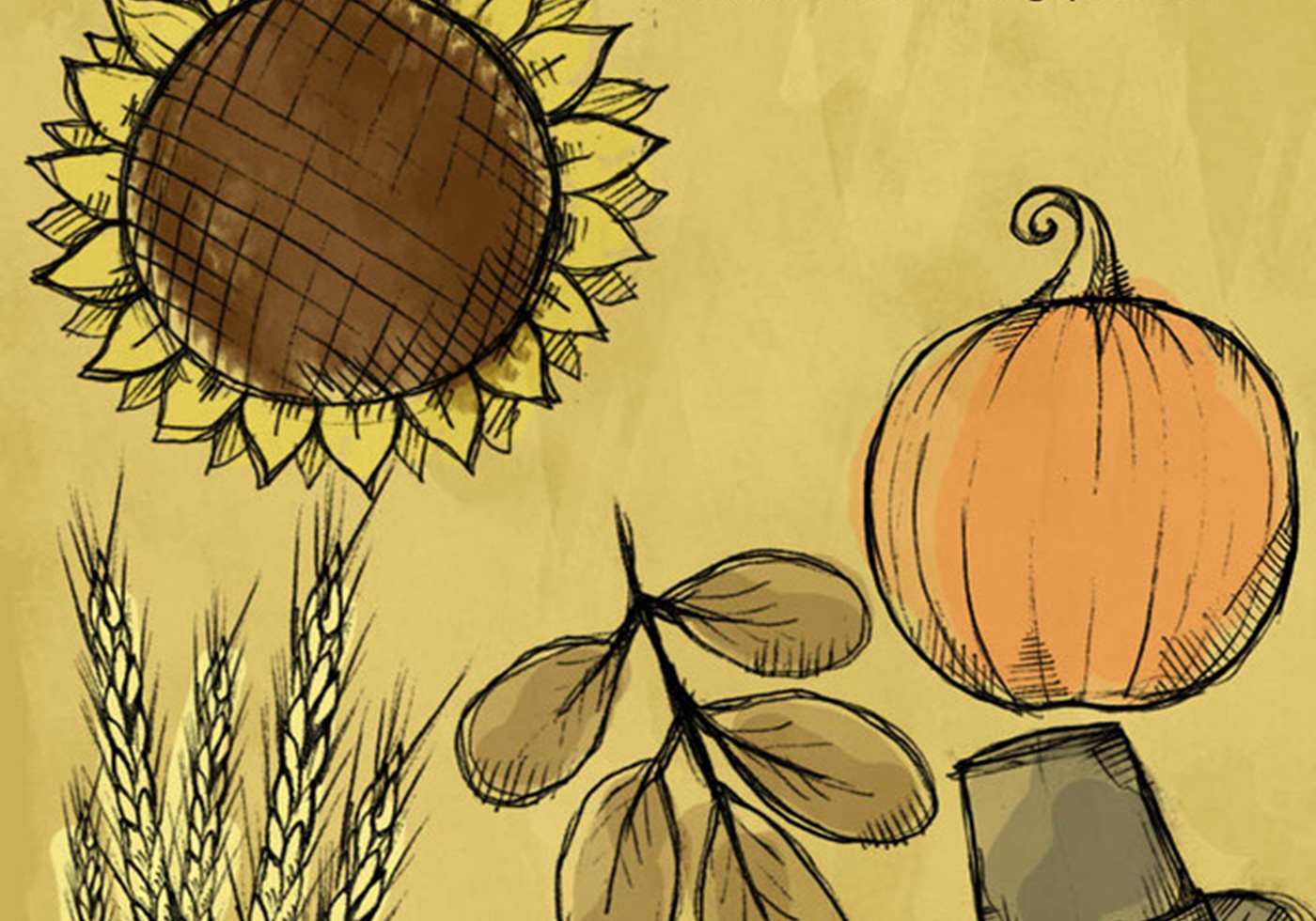 Fall-thanksgiving-sketch-brushes