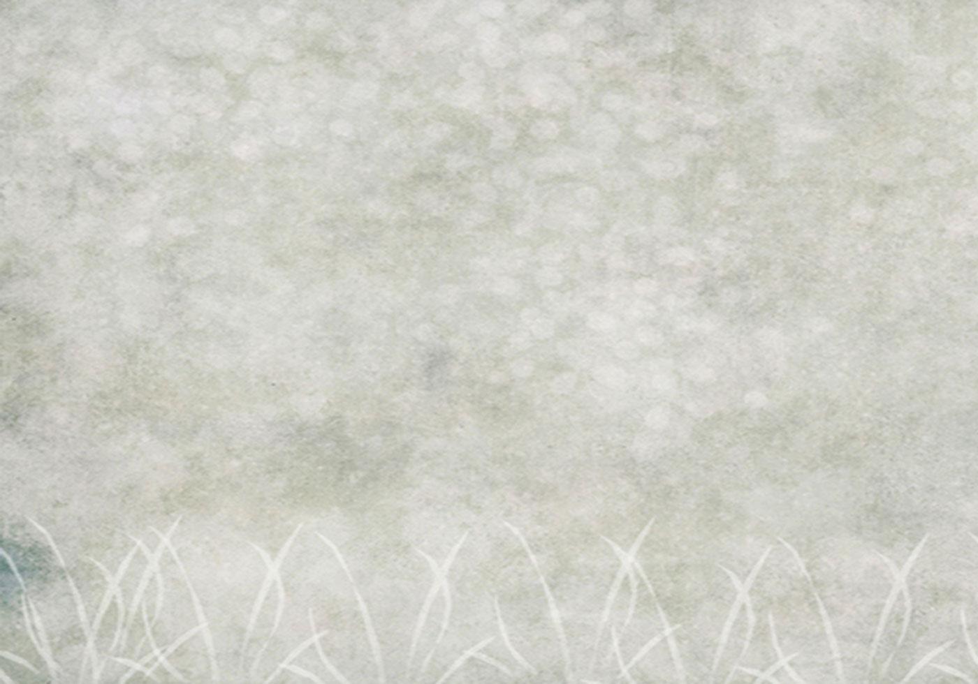 soft texture - Free Photoshop Brushes at Brusheezy!