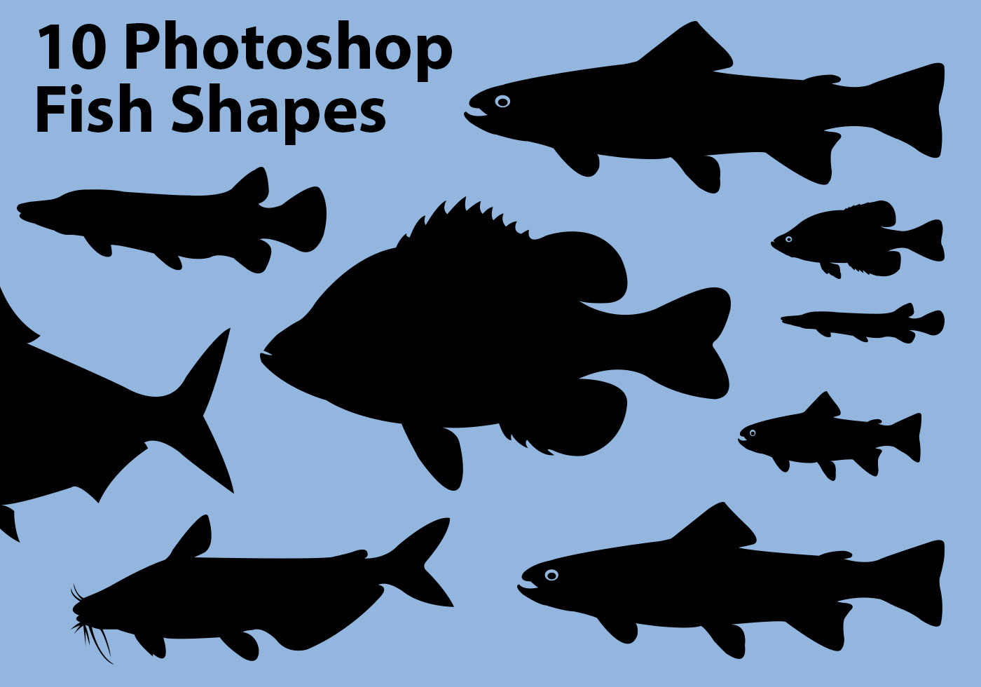 30 Photoshop Fish Shapes | Photoshop Custom Shapes