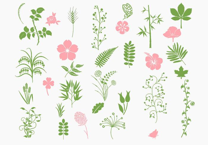 Paquet de brosse biologique rose et vert