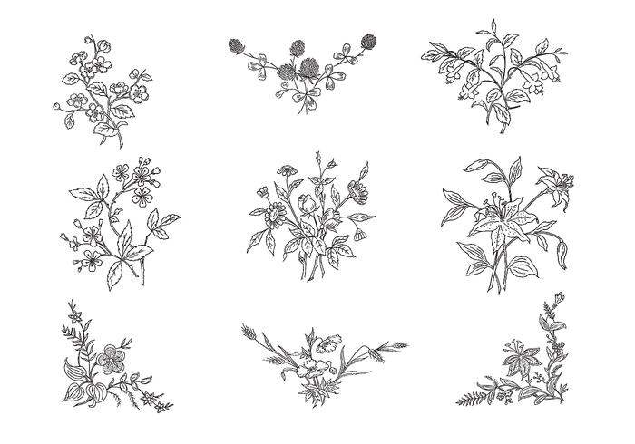 Hand Drawn Black & White Flower Brushes Pack