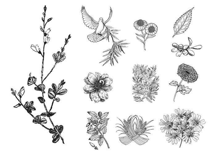 11 pincéis florais gravados