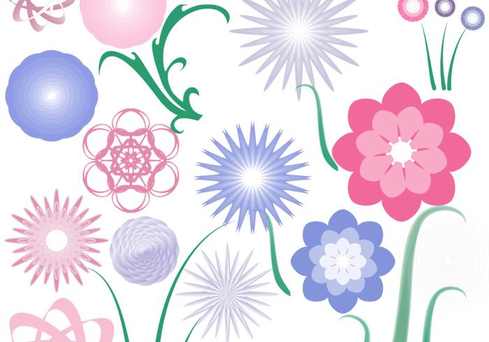 20 radiales florales más 4 tallos