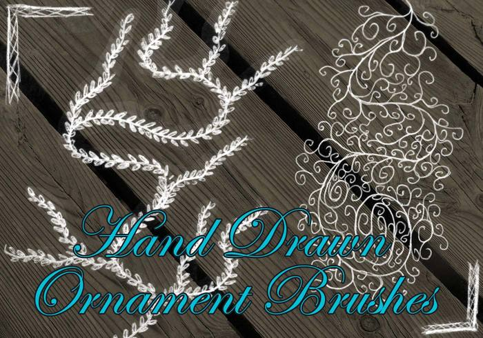 Hand-drawn Ornaments Brushes