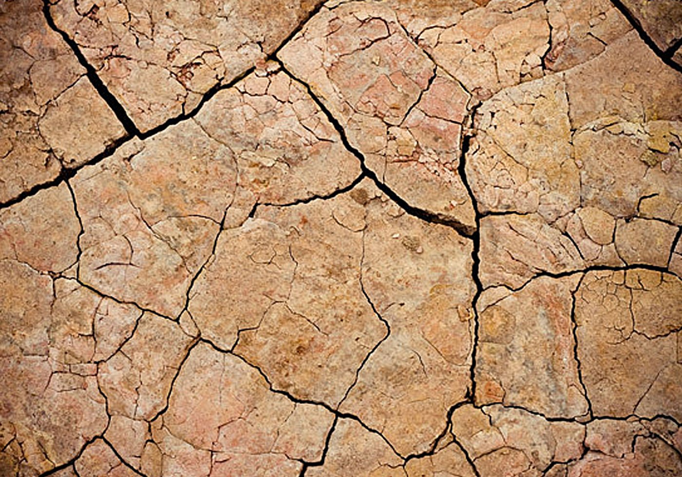Cracked Mud Texture Free Photoshop Brushes At Brusheezy