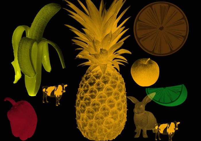 Fruitborstels