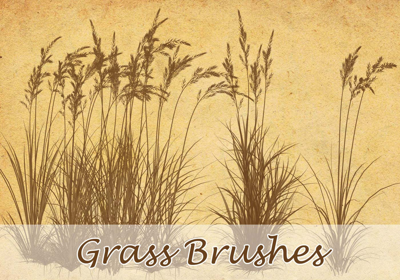 how to clear weeds and brush
