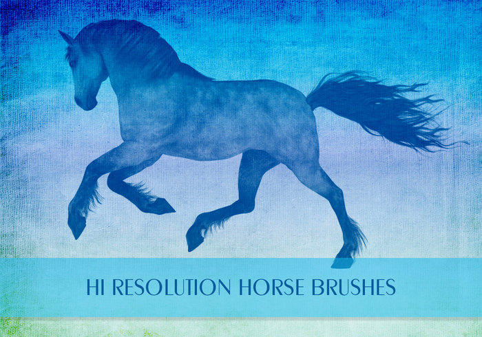 Pferd Pinsel
