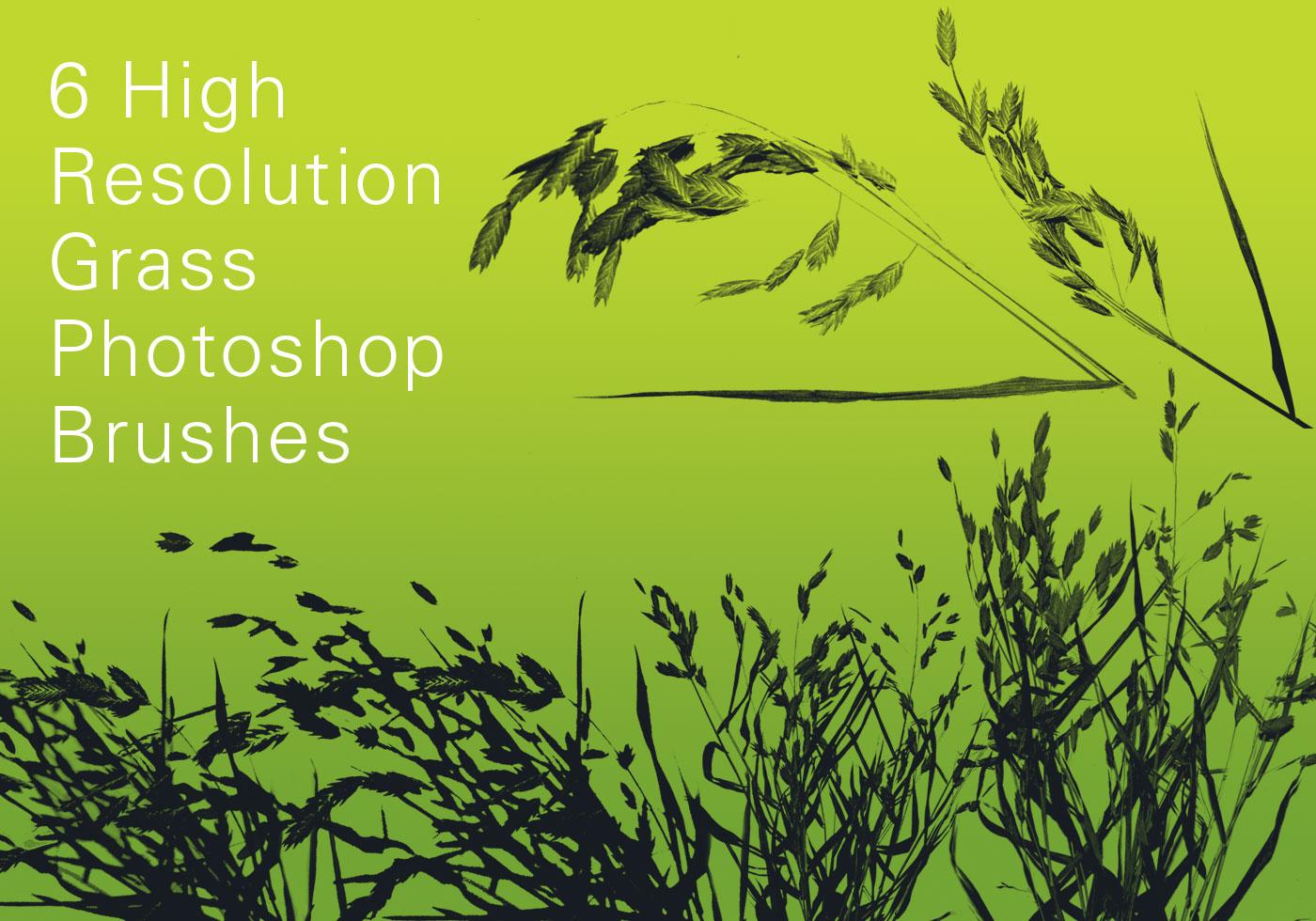 21+ Green Lawn Textures, Photoshop Textures   FreeCreatives