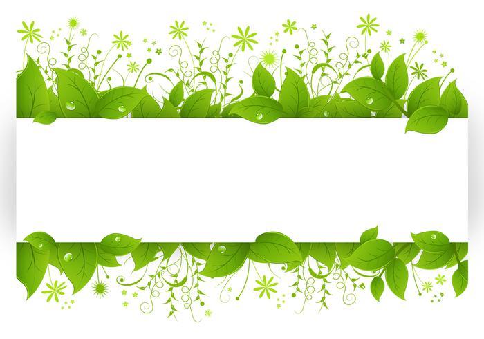 Paquete de cepillo de hojas con hojas