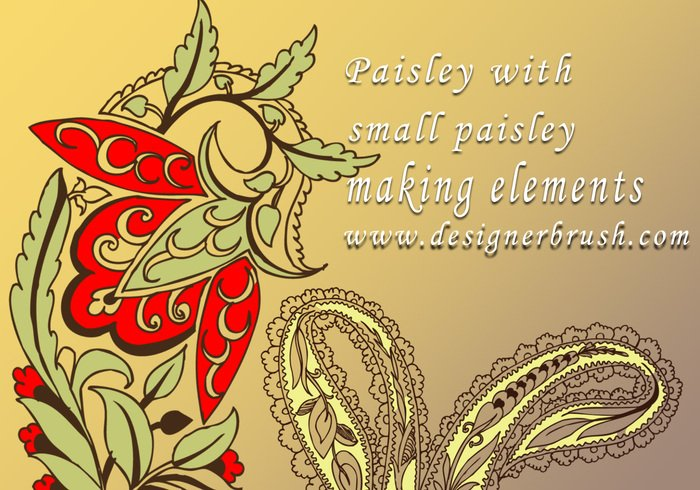 Paisley com motivo paisley decorativo pequeno