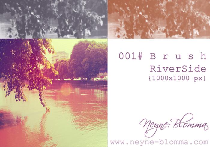 Cepillos laterales del río