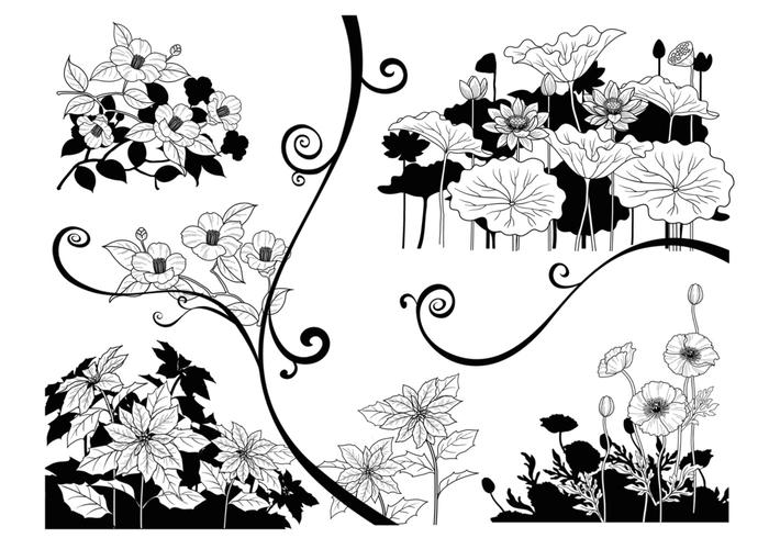 Black and White Contrast Flower Brush Pack