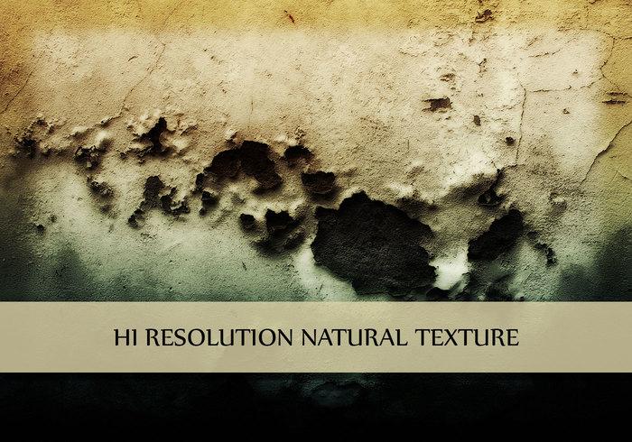 Wall Texture Grunge Garden