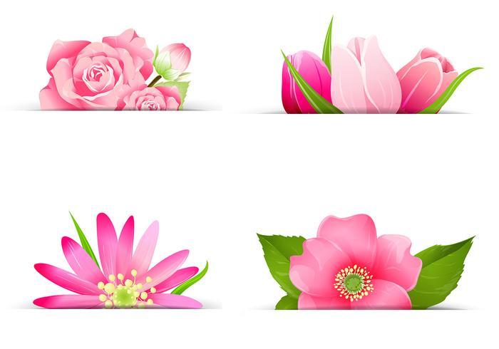 Pink Flower Banner PSD Pack
