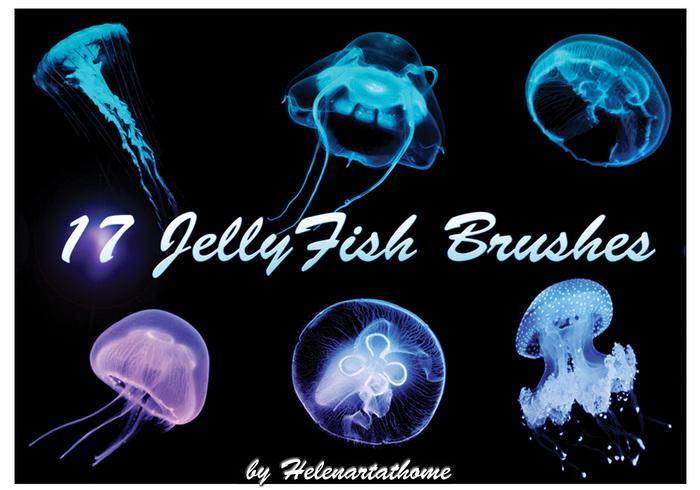 Escovas de medusa