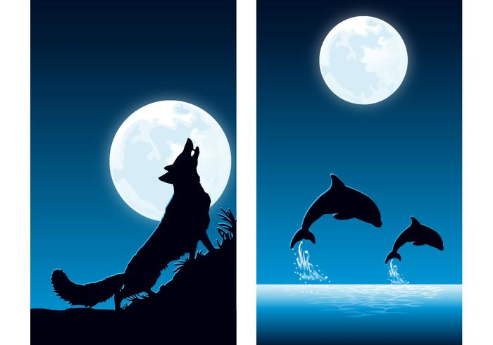 Animals at Night Wallpaper Pack Two