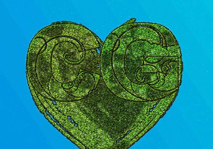 CG Grass
