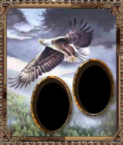 EAGLE FRAME