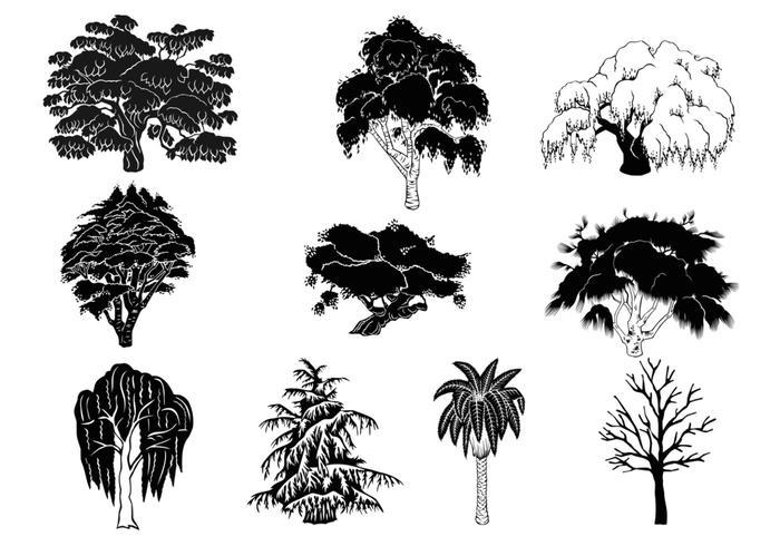 Pack de pinceaux Silhouette d'arbre