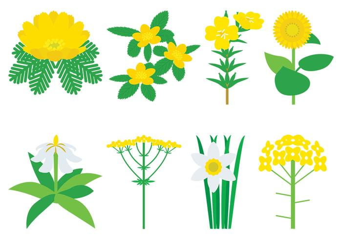Yellow Flowers PSD Pack