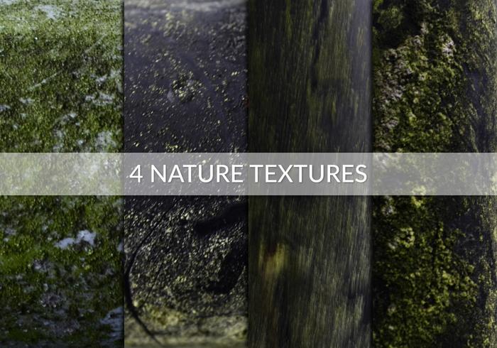 Cuatro texturas naturales