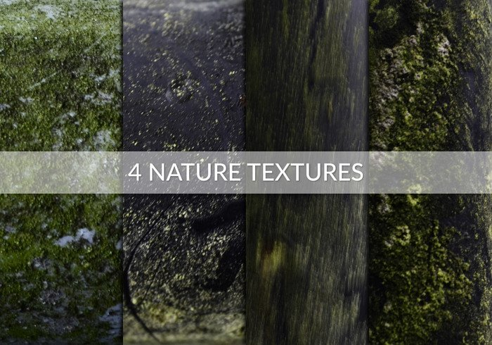 Four Nature Textures