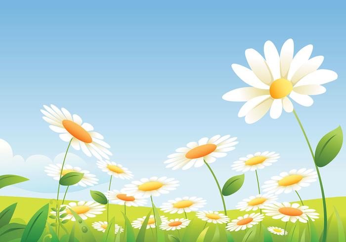 Daisy Landscape Wallpaper Pack