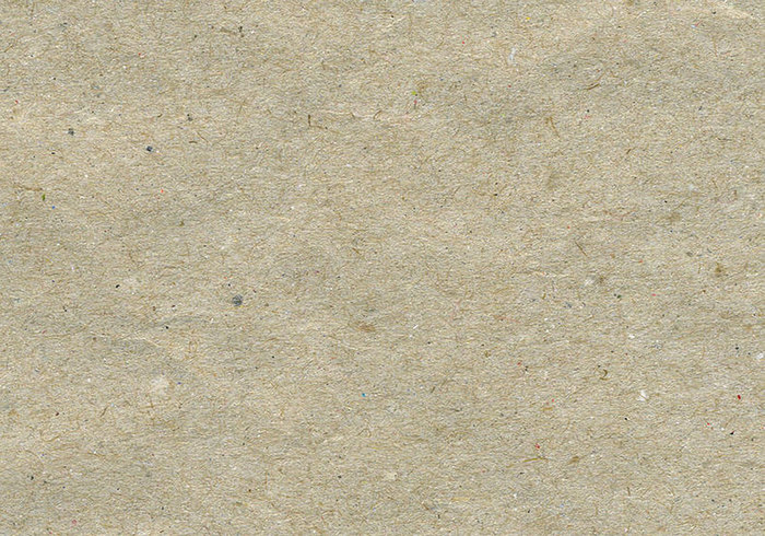 Coarse Hairy Fibrous Brown Paper Texture