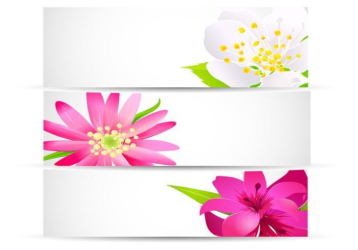 Pacote de Banner Floral Brilhante