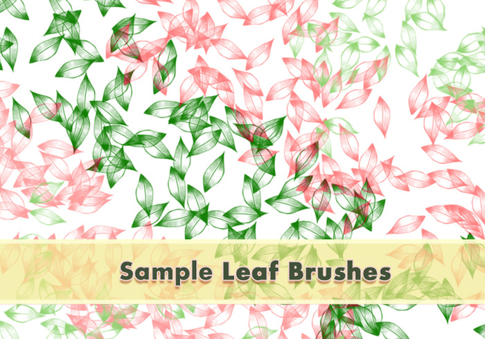 Leafy Brushes Set Sample