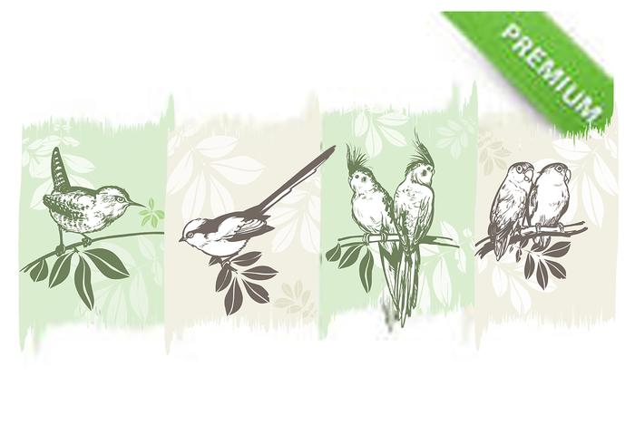 Birds on Branches Brushes Pack