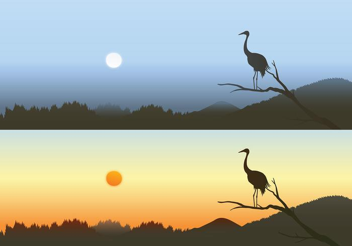 Heron Sunset Wallpaper Pack