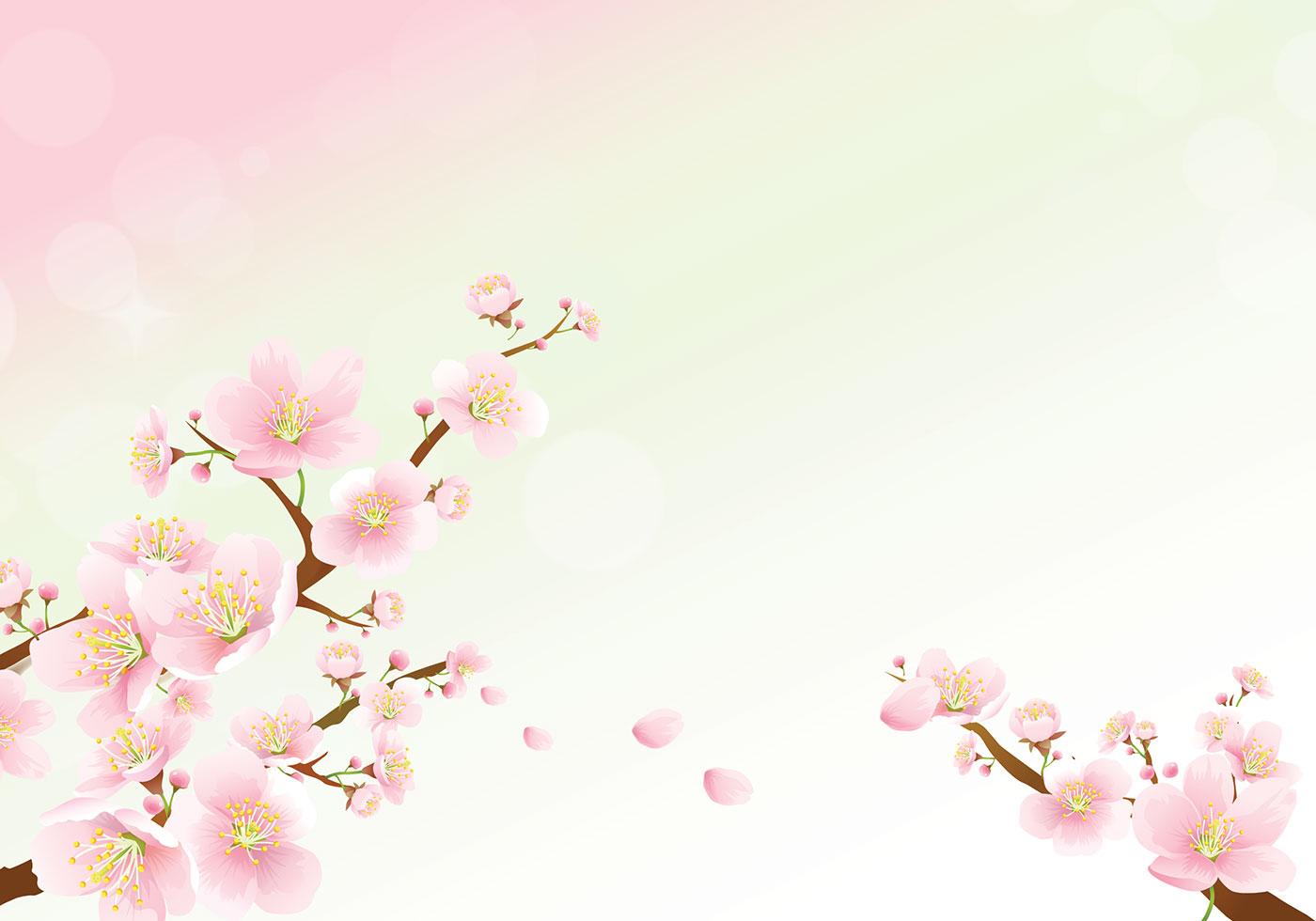 тему фон для презентации сакура красивих