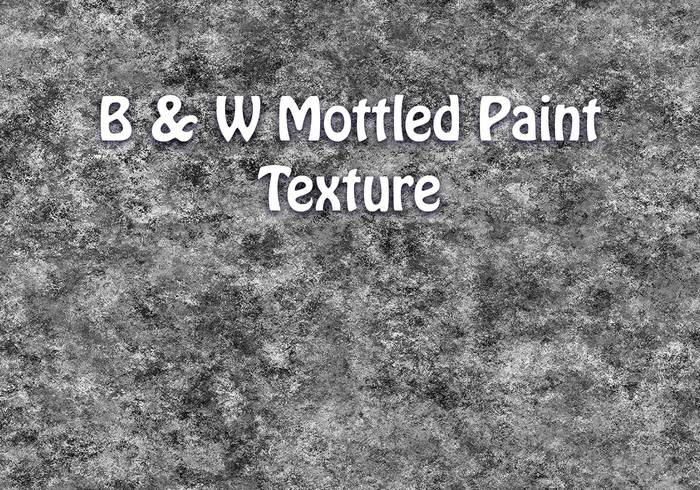 Black & White Mottle Paint Texture