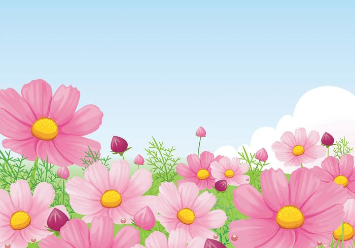 Beautiful Pink Daisy Wallpaper