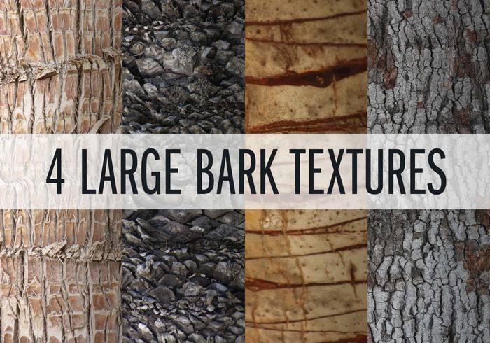4 Large Bark Textures