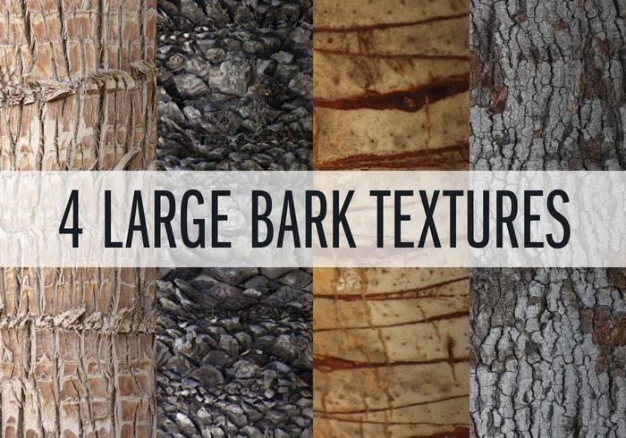 4 texturas grandes de la corteza