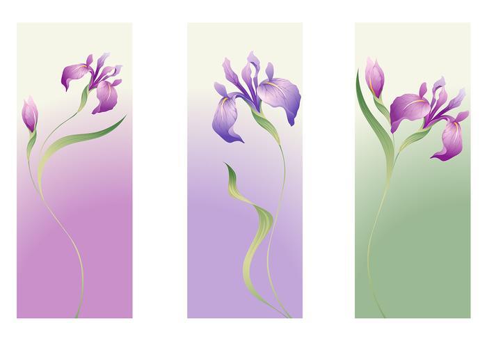 Iris Blumen Banner Pack