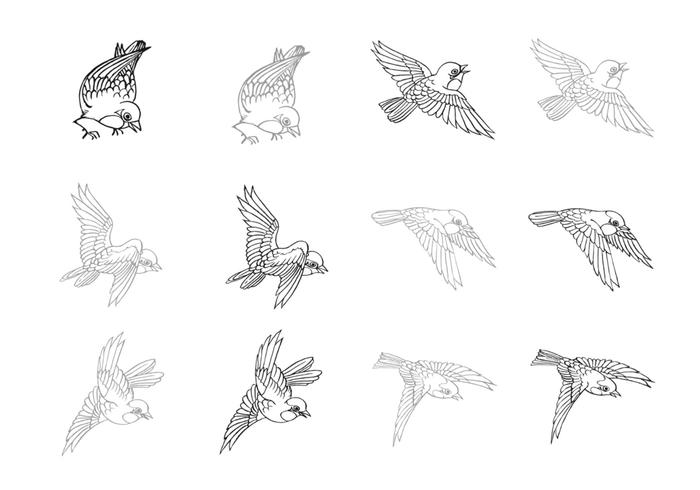 Hand Drawn Flying Bird Brushes Pack