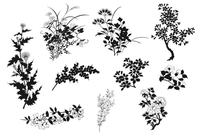 Pate de plantes naturelles Silhouette Elements Pack