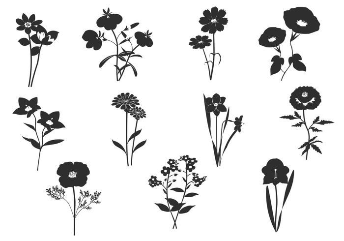 Schwarz-Weiß-Blumenbürsten Pack