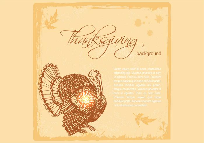 Fond de PSD de Thanksgiving Turkey PSD