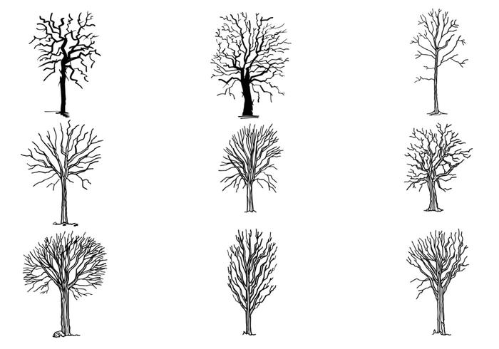 Hand Drawn Dead Tree Brushes Pack