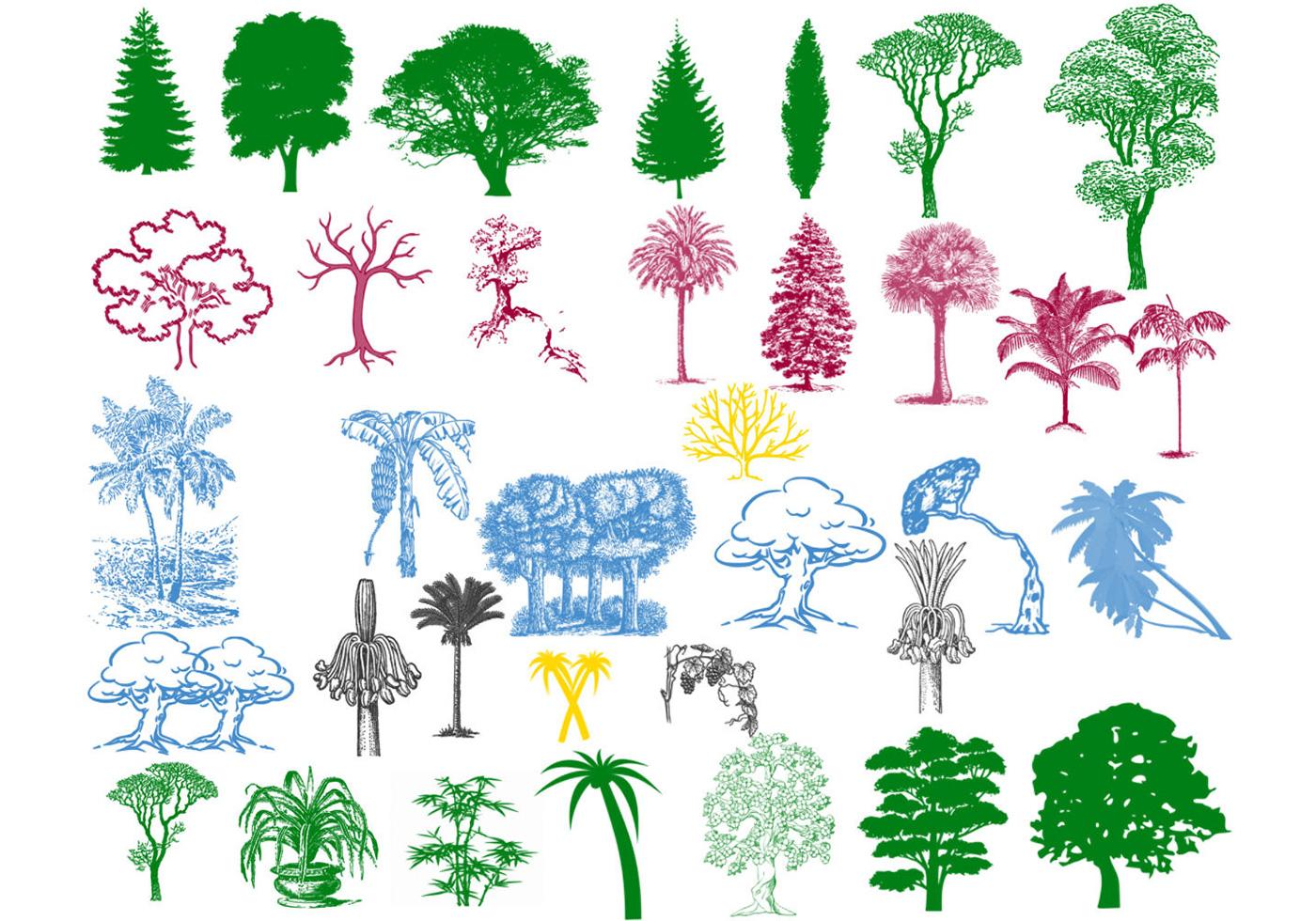 Tree Silhouette Brushe...