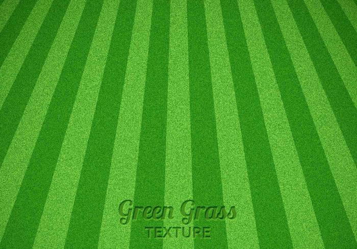Mowed Green Grass Texture PSD