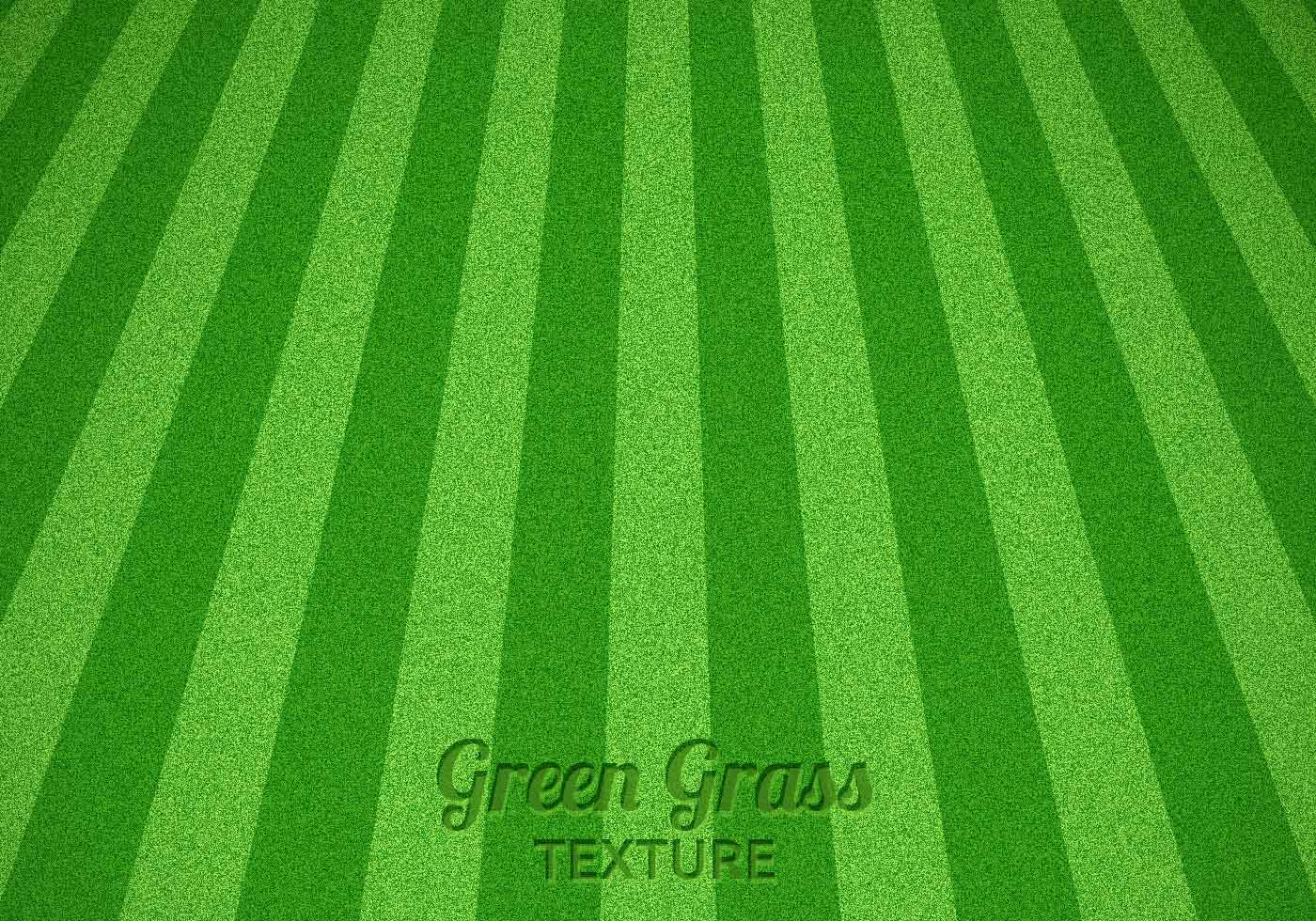 Mowed Green Grass Texture Psd Free Photoshop Brushes At