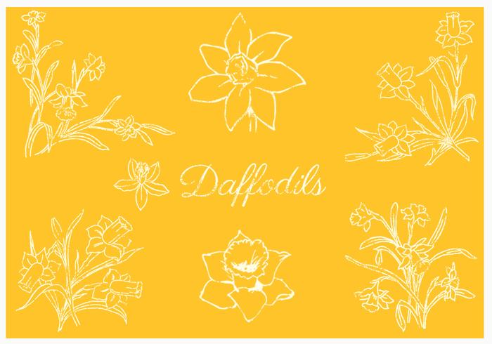 Daffodil Brushes Pack