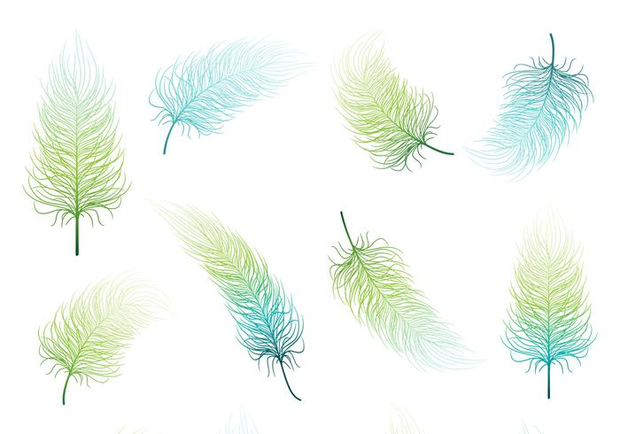 Conjunto PSD de Blue Green Feather