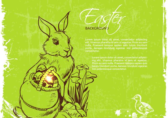 Easter Bunny PSD Background